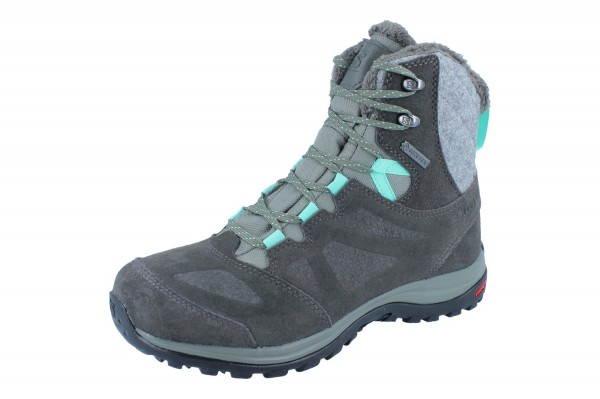 SALOMON Ellipse Winter GTX W grau
